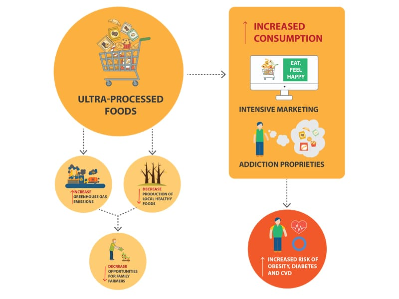 Ultra-processed foods infographic